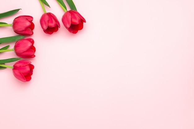 Skład czerwoni tulipany na różowym tle. leżał płasko, widok z góry, miejsce. dzień kobiet, dzień matki, koncepcja wiosna. dekoracje kwiatowe