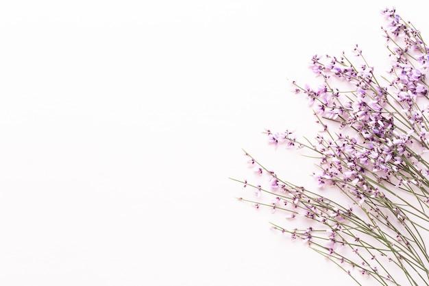 Skład kwiatów widok z góry różowe kwiaty