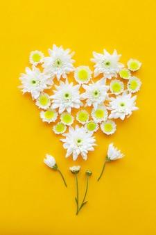 Skład kwiaty na koloru żółtego papieru tle.