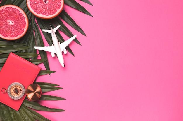 Skład małego samolotu paszport kompas urlop roślin