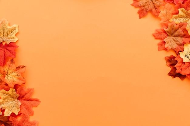 Skład powierzchni liści jesienią