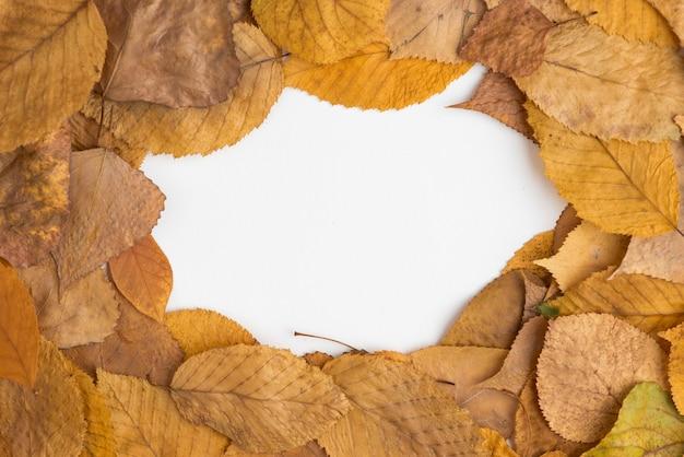 Skład rama jesień spadać liście