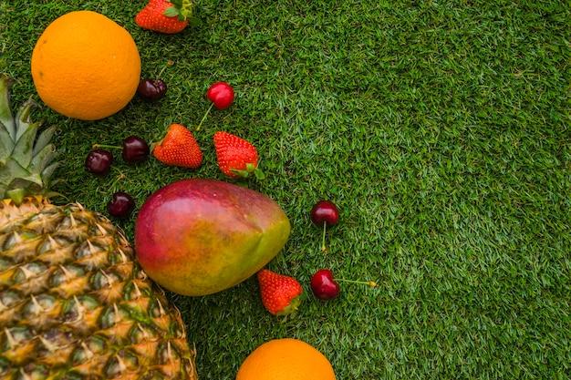 Skład z letnich owoców i trawy