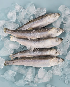 Skład z mrożonymi rybami na stole