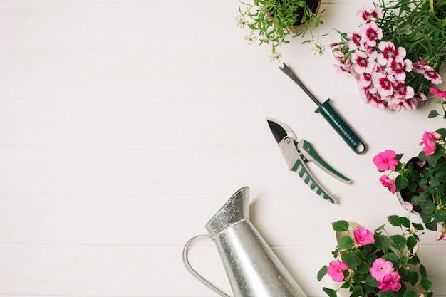 Skomponowany garnek do podlewania z kwiatami