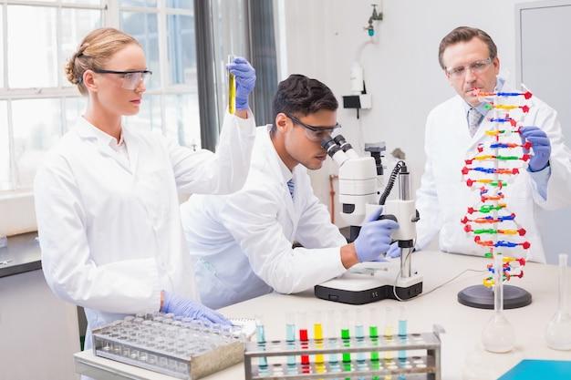 Skoncentrowani naukowcy pracujący razem