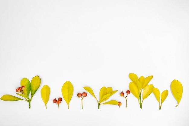 Skopiuj wiersz przestrzeni liści