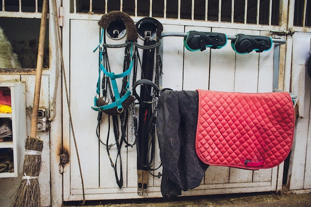 Skóra osiodłuje konia w stajni
