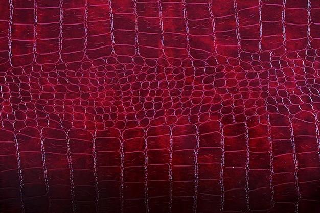Skóra skórki węża