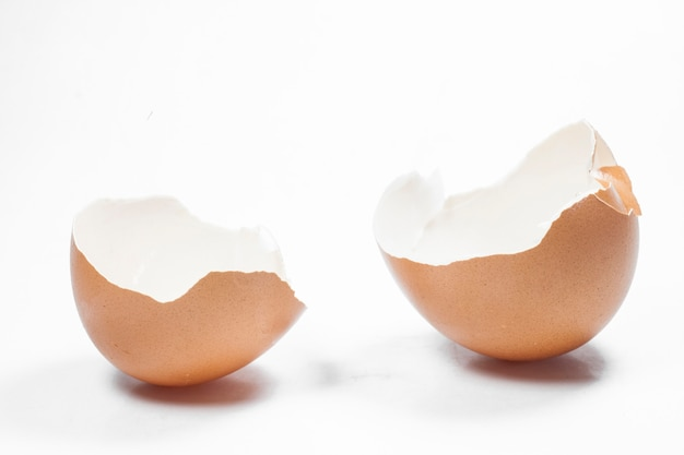 Skorupki jaj na białym tle