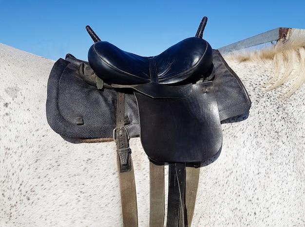Skórzane siodło z pasami na grzbiecie konia
