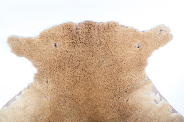 Skórzane tło kangura.