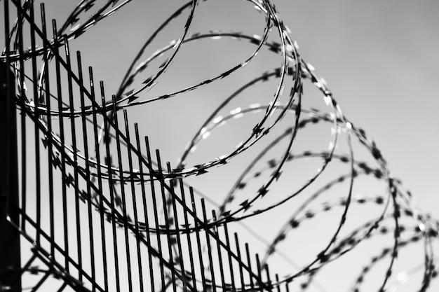 Skręcony drut kolczasty na metalowym ogrodzeniu. ogrodzenie więzienia. czarno białe zdjęcie.