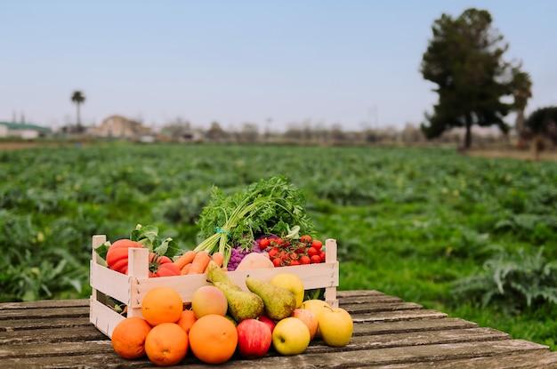 Skrzynia z warzywami i owocami w polu upraw