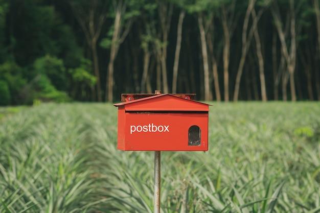 Skrzynka pocztowa w lesie.