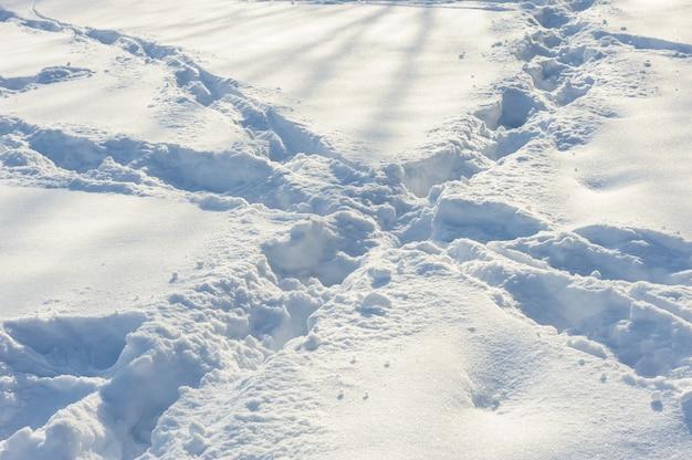 Skrzyżowane ślady na śniegu