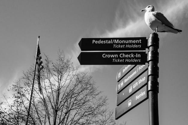 Skrzyżowanie drogi z seagull spoczywającej na słupie