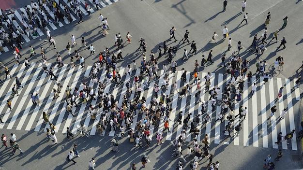 Skrzyżowanie tokio / shibuya / scramble
