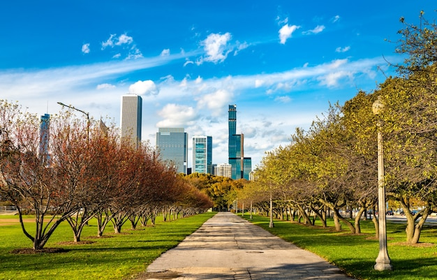 Skyline of chicago w grant park w stanie illinois w stanach zjednoczonych