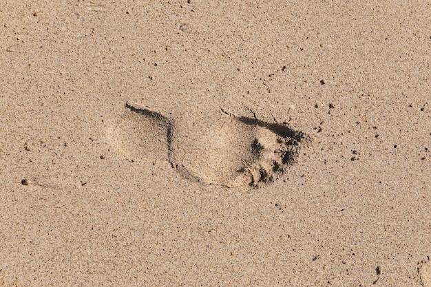Ślad bosej stopy mężczyzny na piasku.