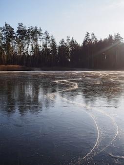 Ślad łyżwy na zamarzniętym lasowym jeziorze w zimie przy zmierzchem