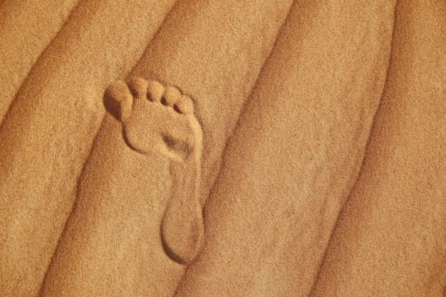 Ślad na piasku pustyni