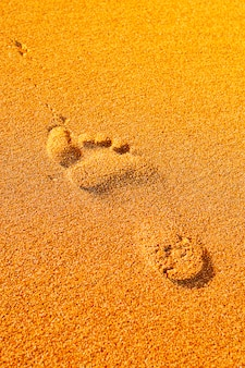Ślad na plaży