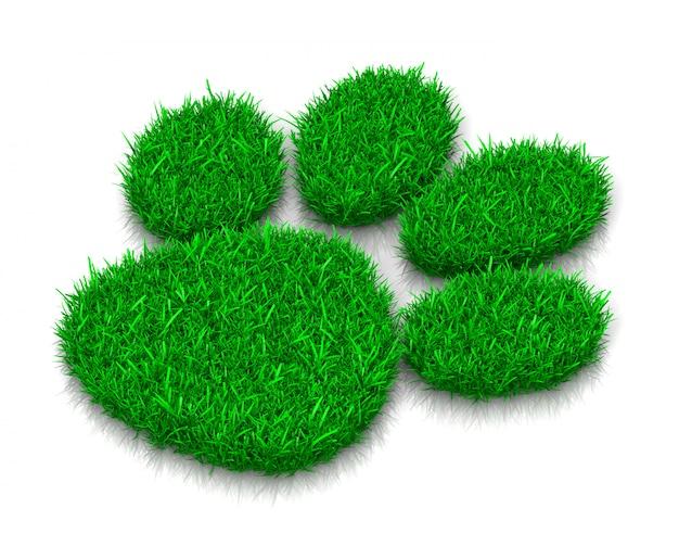 Ślad trawy psa