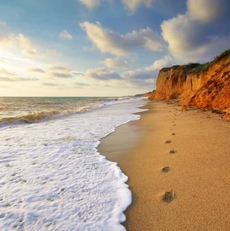 Ślady na brzegu