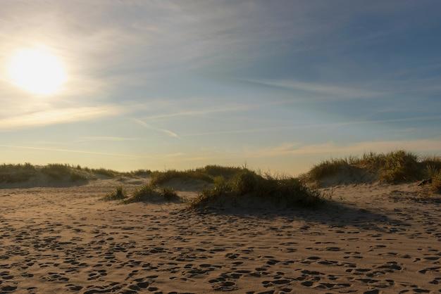 Ślady na piasku wśród wydm na bałtyku o zachodzie słońca.