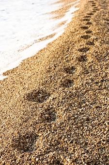 Ślady na plaży, platia amos