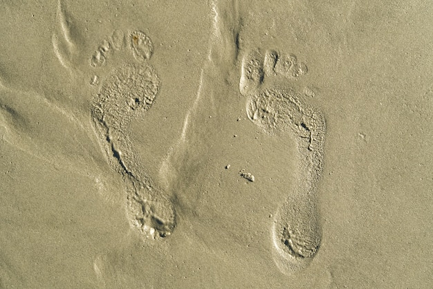 Ślady na plaży w piaszczystej. śladami na koralowej, piaszczystej plaży. ślady na piasku.