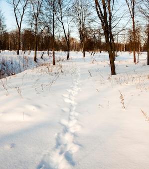 Ślady od ostatniej osoby pozostały na śniegu