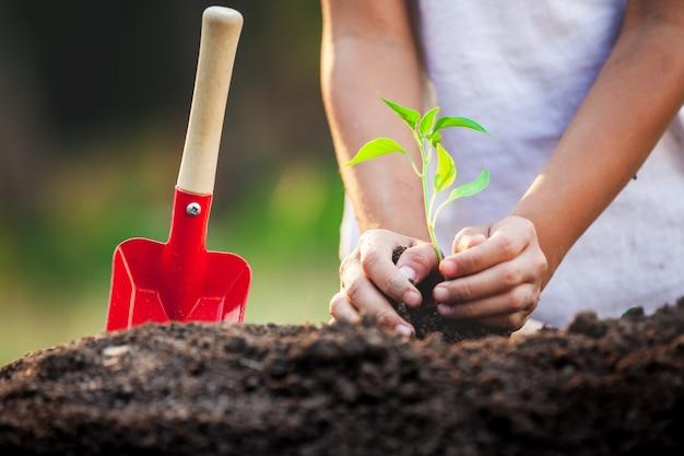Śliczna azjatykcia dziecko dziewczyna zasadza młodego drzewa w czarnej ziemi w ogródzie