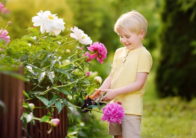 Śliczna chłopiec pracuje z sekatorem w domowym ogródzie