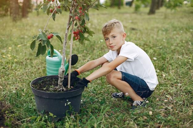 Śliczna chłopiec zasadza drzewa na parku