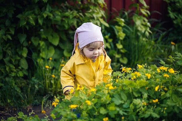 Śliczna dziewczyna w żółtej kurtce zbiera kwiaty na łące. w świeżej zielonej trawie wśród wiosennych kwiatów stało dziecko. małe dziecko robi bukiet pierwszych dzikich żółtych kwiatów