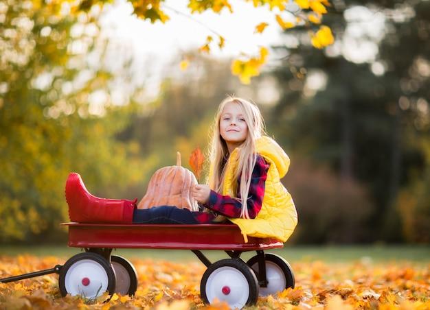 Śliczna dziewczyna w żółtym płaszczu przeciwdeszczowym, czerwone gumowe buty w parku jesień siedzi z dyni na czerwonym wózku