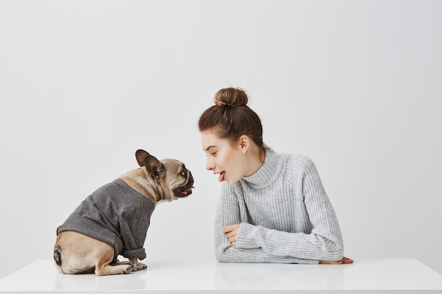 Śliczna kobieta z mody fryzurą i jej szczeniaka buldoga francuskiego ubierającym w bluzie. kobieta model siedzi na stole z psem na białej ścianie. pojęcie przyjaźni, miejsce