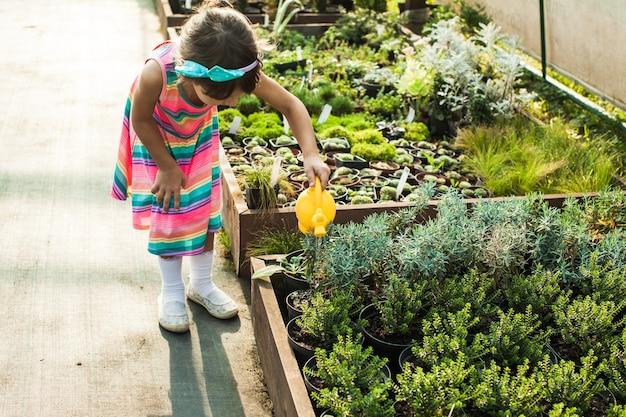 Śliczna mała dziewczynka podlewa sadzonki z konewki w szklarni