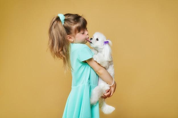 Śliczna mała dziewczynka trzyma w ramionach maltańskiego psa kolanowego. która oblizuje usta. sesja zdjęciowa w studio na żółtym tle.