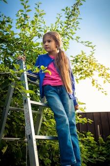 Śliczna młoda dziewczyna stojąca na drabinie w ogrodzie jabłkowym