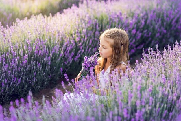 Śliczna młoda dziewczyna zbiera lawendę. dziewczyna siedzi w lawendowym słońcu.