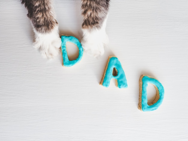 Śliczne łapy kota i słowo dad