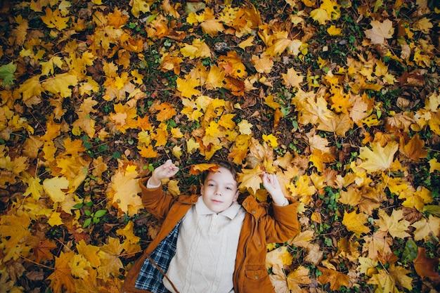 Śliczny chłopiec chodzi i pozuje w kolorowym jesień parku