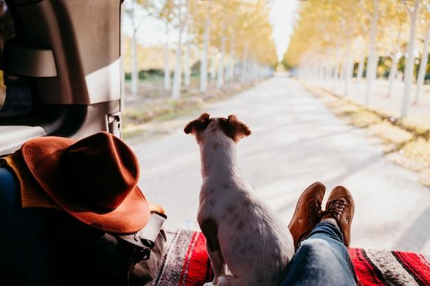 Śliczny jack russell pies i kobieta iść na piechotę relaksować w samochodzie dostawczym. koncepcja podróży