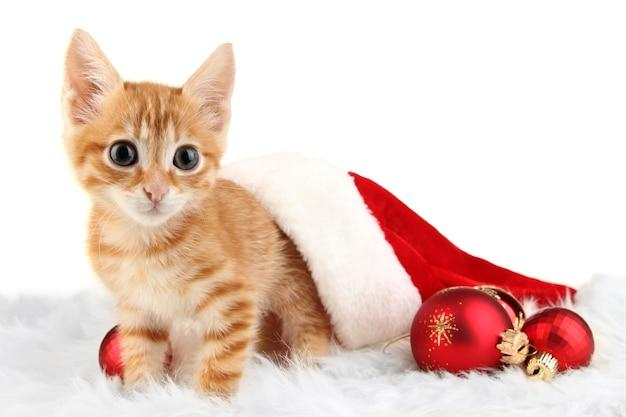Śliczny mały czerwony kotek w santa hat na białym tle