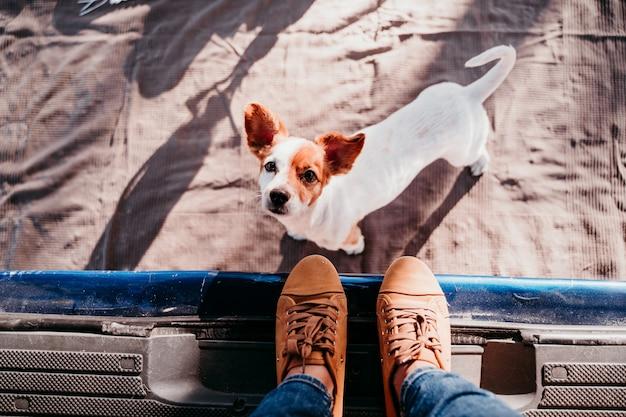 Śliczny pies jack russell i jego nie do poznania właścicielka relaksująca się w furgonetce. koncepcja podróży