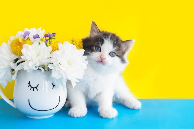 Śliczny puszysty kotek obok kubka z kwiatami i szczęśliwą buzią na pół żółtym i niebieskim tle