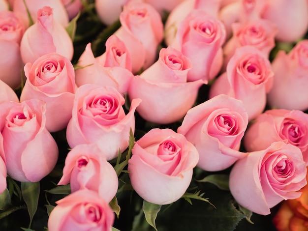 Śliczny różowy bukiet róż